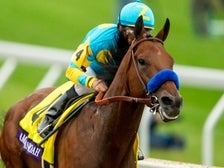 Breeder's Cup
