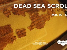 """Dead Sea Scrolls: The Exhibition"" banner"